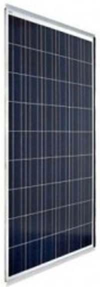 panel 250W ibc